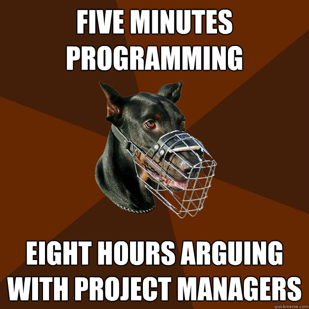 fears of programmers